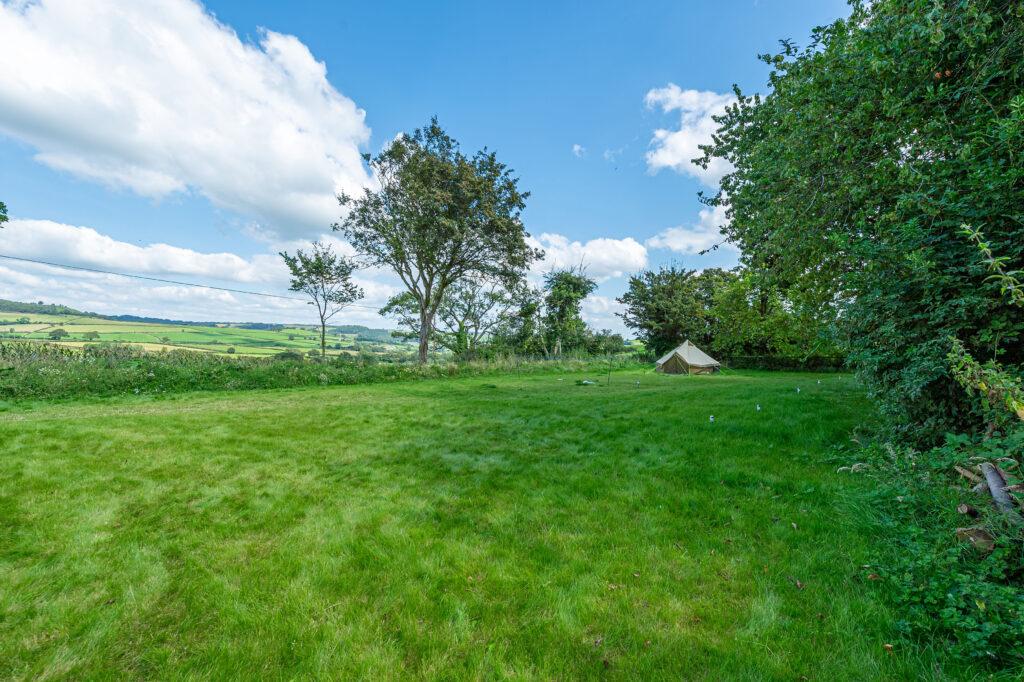 Green field view